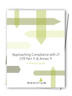 Whitepaper---Approaching-Compliance-with-21-CFR-Part-11--Annex-11_1